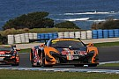 Australian GT Phillip Island Australian GT: Van Gisbergen scorches to enduro pole