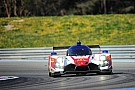Le Mans Greaves adds Giermaziak to Le Mans line-up