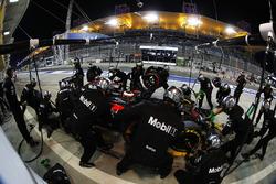 Stoffel Vandoorne, McLaren MP4-31 in the pits
