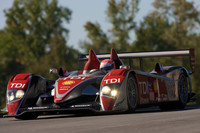 Audi pulls plug on season-long programs