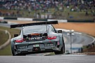 Team Falken Tire Porsche 911 GT3 RSR scores GT win at final ALMS Petit Le Mans