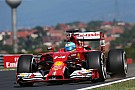 Alonso should spend career at Maranello - Piero Ferrari