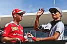 F1 马尔科:梅赛德斯选威尔雷恩才有乐趣