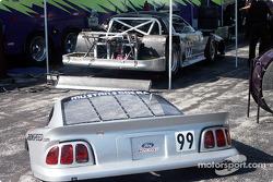Paet Hidalgo's Mustang