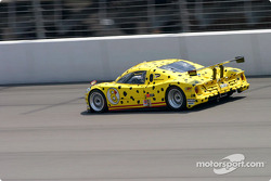 #8 G&W Motorsports BMW Picchio DP2 Darren Law, Andy Lally