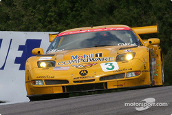#3 Corvette Racing Chevrolet Corvette C5-R: Ron Fellows, Johnny O'Connell