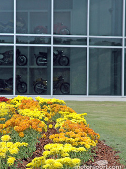 Flowers with reflections of motorcycles inside