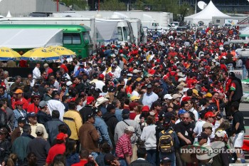 Crowd in the paddock area