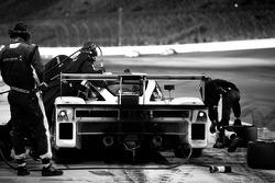 Pit stop for #8 Starworks Motorsport Ford Riley: Ryan Dalziel, Lucas Luhr, Allan McNish, Alex Popow, Enzo Potolicchio