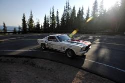 #371 Ford Mustang: Gerhard Pegam