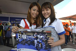 Lovely Yamaha fans