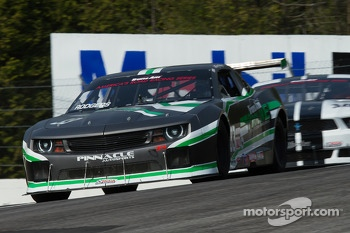 #33 TransAm Proline/Pinnacle Autosport: Gregg Rodgers
