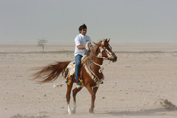 Antonio Pizzonia on an Arab horse