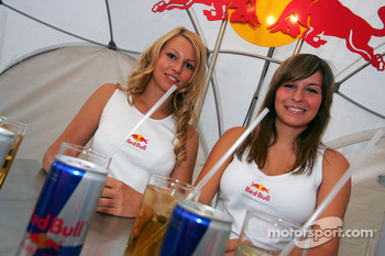 Red Bull Petit Prix in Manheim: charming Red Bull hostesses