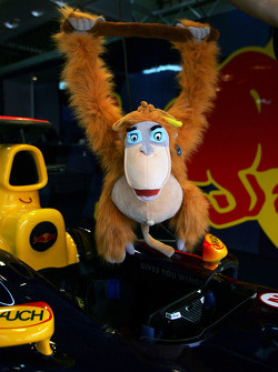 King Louie in Red Bull Racing garage area