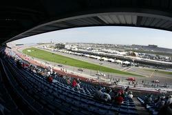 Daytona fans watch race action
