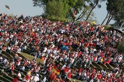 Tifoso at Imola