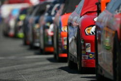 Cars on the starting grid