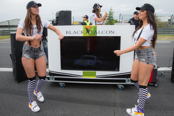 Black Falcon party girls on the starting grid