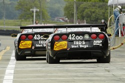 Team Sahlen Corvettes
