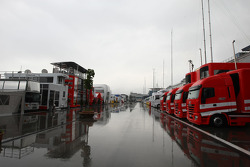 Rain in the morning in the paddock
