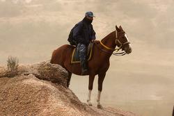 A horse rider