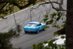#101 1965 Mustang: Tim Holland