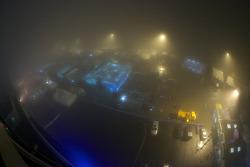 Heavy fog over the paddock