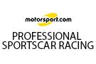 Professionelle Sportwagenrennen