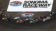 Preview Show: Sonoma