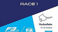 28th race of the 2016 season / 1st race at Hockenheim