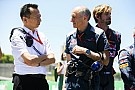 Hondas Notfallplan: Startet Toro Rosso 2018 mit alten Motoren?