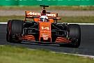 Formula 1 Ufficiale: Fernando Alonso ha rinnovato con la McLaren