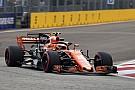 Stoffel Vandoorne: McLaren in der Formel 1 war anfangs ein Alonso-Auto