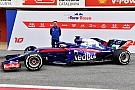 Toro Rosso: Honda bize değil, biz Honda'ya adapte olduk