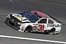 NASCAR Cup Caterpillar to continue partnership with RCR in 2018