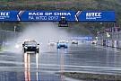 WTCC Troppa pioggia, Main Race sospesa e vittoria a Néstor Girolami