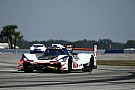 IMSA Sebring 12 Hours: Taylor puts Penske-Acura on top again
