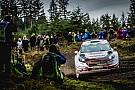 WRC Ралі Уельс: історичний тріумф та п'ятий титул!