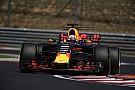 Formel 1 Formel 1 2018: Pierre Gasly ist für Toro Rosso