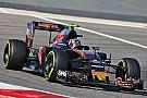 Toro Rosso plans
