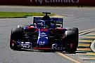 Хартлі: Toro Rosso має в запасі цікаві новинки