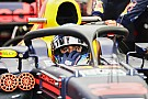 Fórmula 1 Ricciardo: fãs irão se acostumar com o halo na F1