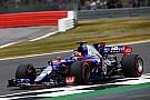 Pilotos da Toro Rosso trocam acusações após acidente