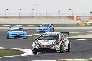 WTCC Practice report Qatar WTCC: Monteiro fastest in second practice