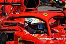 Fórmula 1 FIA: Fãs não precisam ver capacetes para distinguir pilotos