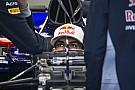 Toro Rosso: Гаслі майже підтверджено, Хартлі під питанням