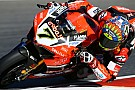 WSBK Ducati, Davies: