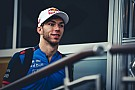 Formel 1 2019: Red Bull will Gasly, Sainz zu McLaren?