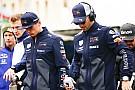 Ферстаппен и Риккардо принесут извинения сотрудникам Red Bull